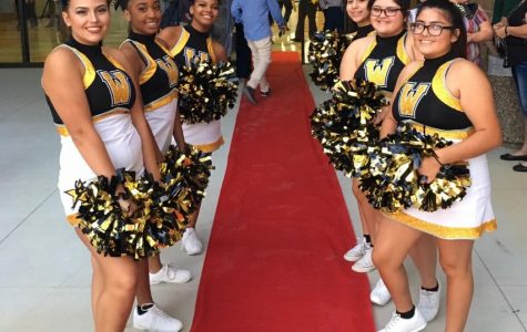 A Red Carpet Entrance for the Brand New Wisdom High School