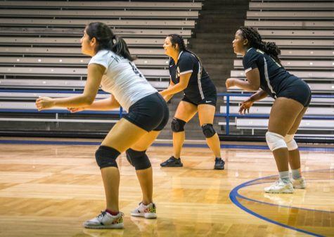 Wisdom Extends Volleyball Win Streak to Five Straight Matches
