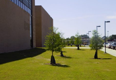M.L. Wisdom High School - Houston, Texas