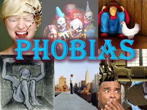What are you Afraid of? Some Student Phobias