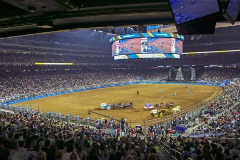 OP-ED: Houston Rodeo